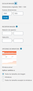 Cómo disminuir tamaño de imagenes en WordPress - Imagen 3